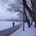Winter 2009 007 (2)